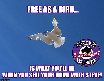 free as a bird meme.jpg