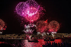 Lovepik_com-279906-fireworks-in-the-nigh