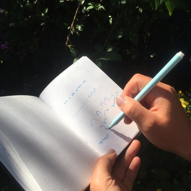 Writing birdsong