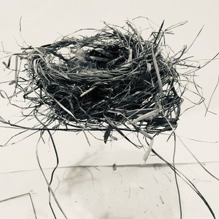 Participant's nest 4