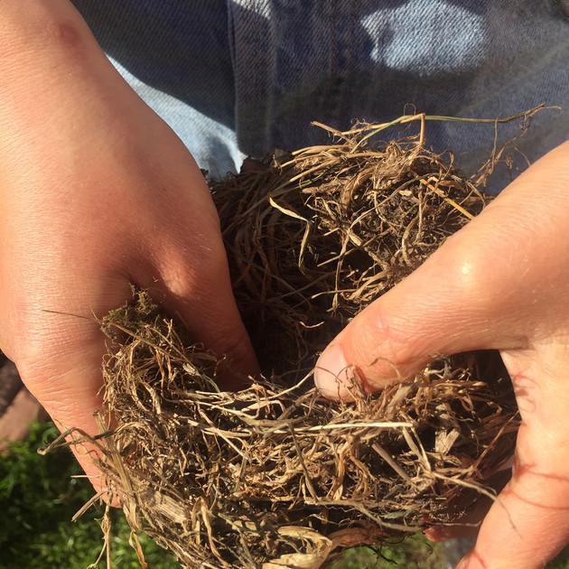 Participant nest making