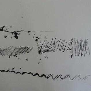 Participant's response to audios of Moray Firth Marine mammals
