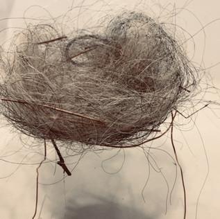 Participant's nest 3