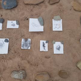 Beach exhibition