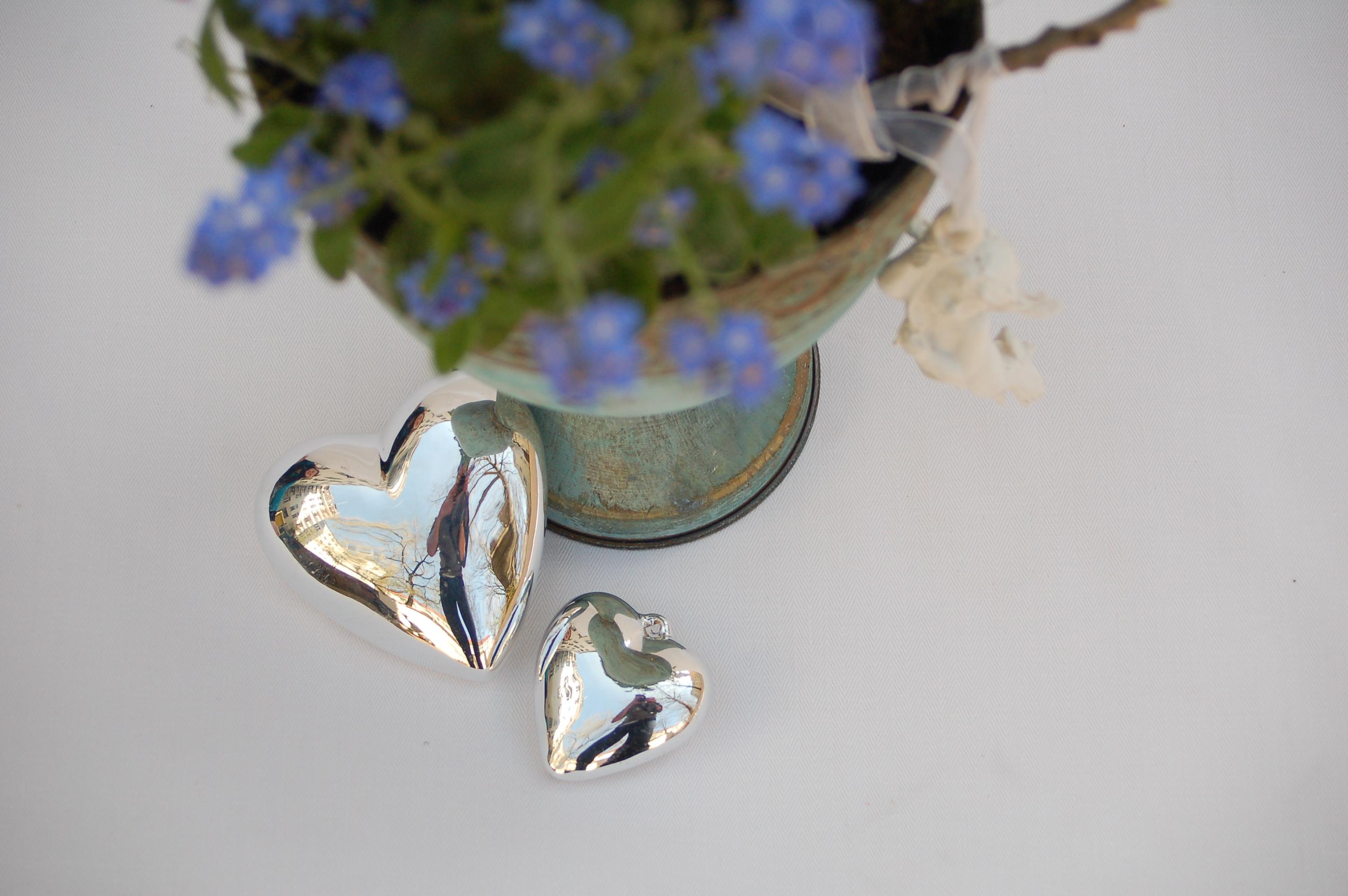 Webseite Kirschblüte