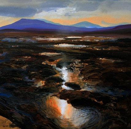 Wetlands Sutherland Highlands