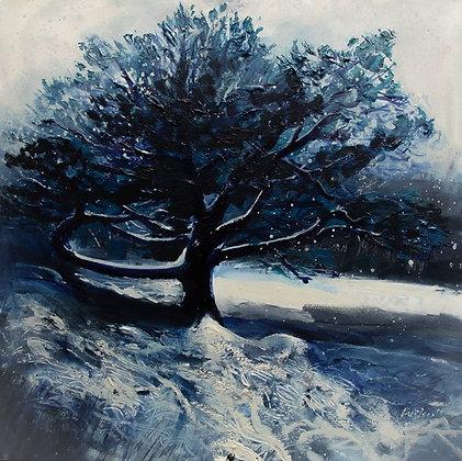 Glen Affric Snow 2