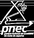 pnec.png