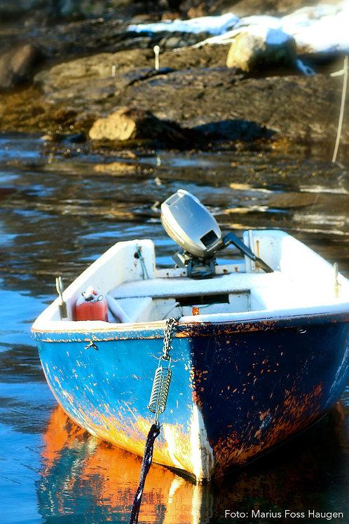 Båtliv (Nr 8)