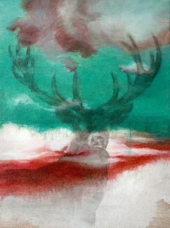 Deer Shadow