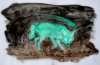 A Secret Life of Animals Green Coyote