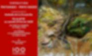 flyer paysages ok.jpg
