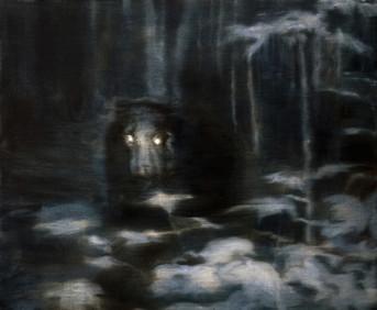 A Secret Life of Animals Black Bear