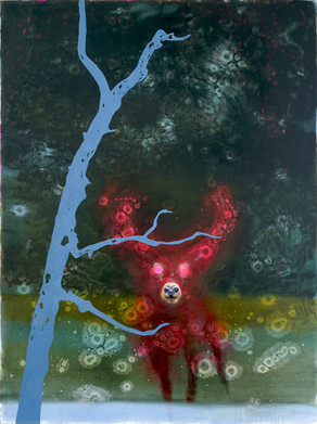 A Secret Life of Animals Red Stag