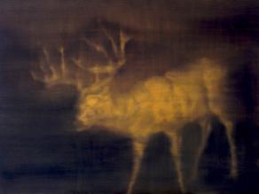 A Secret Life of Animals Golden Deer