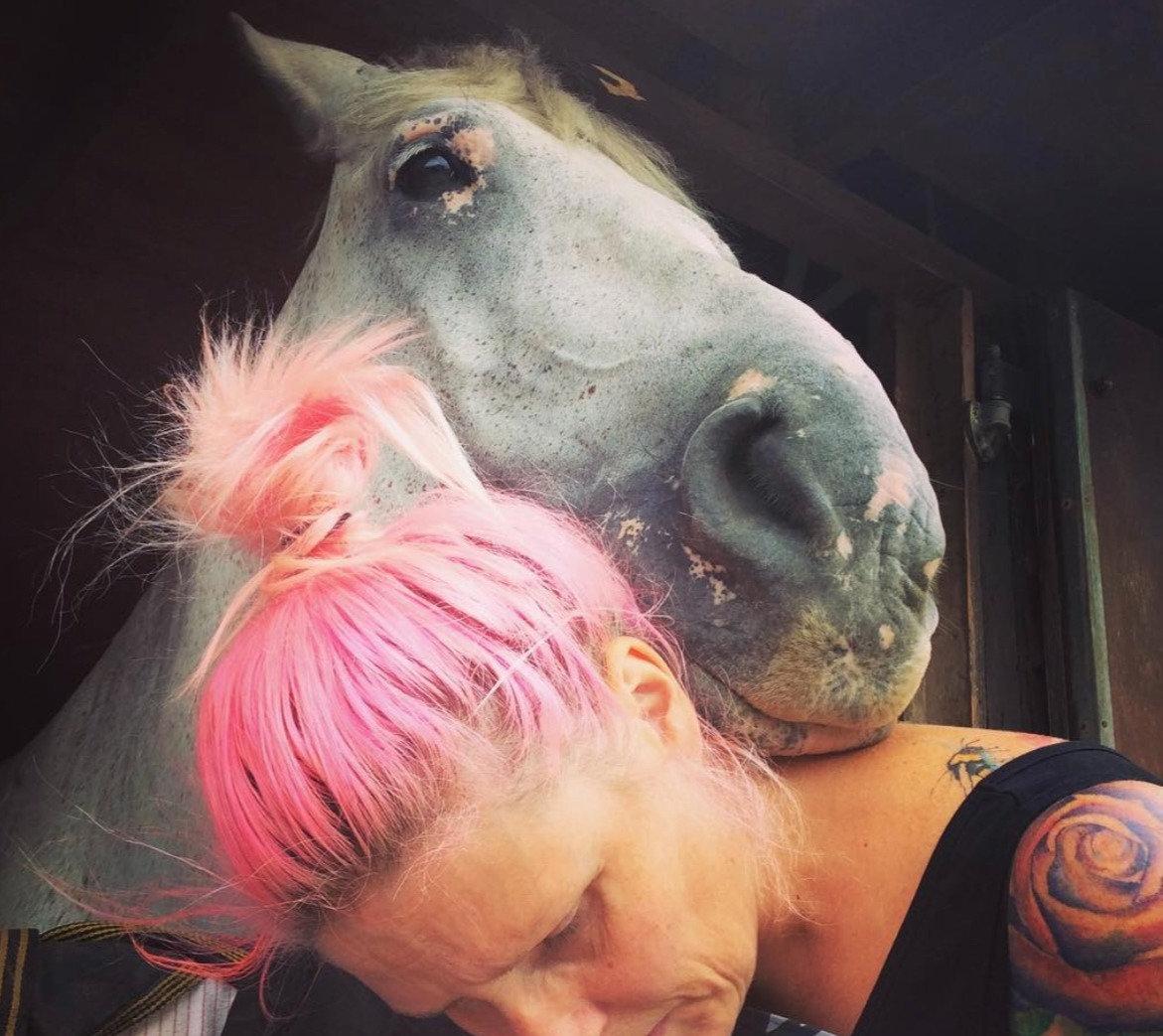 Equine Communication