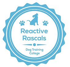 Reactive_Rascals%20(1)_edited.png