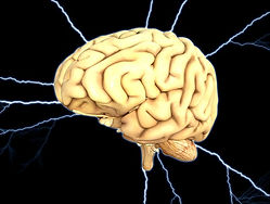 brain-1845940_640.jpg