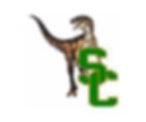 Steel City Raptors.png