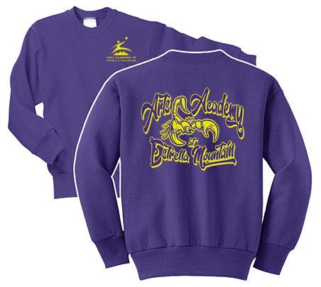AAEM Spirit Sweatshirt