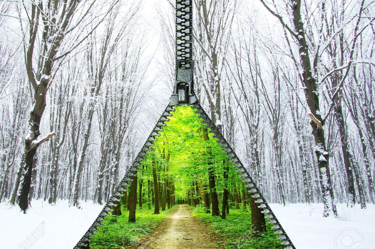 Zipper Winter Spring