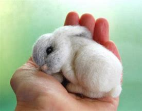 felted bunny.png