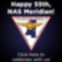 NAS Meridian 55th Celebration
