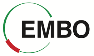 EMBO.png