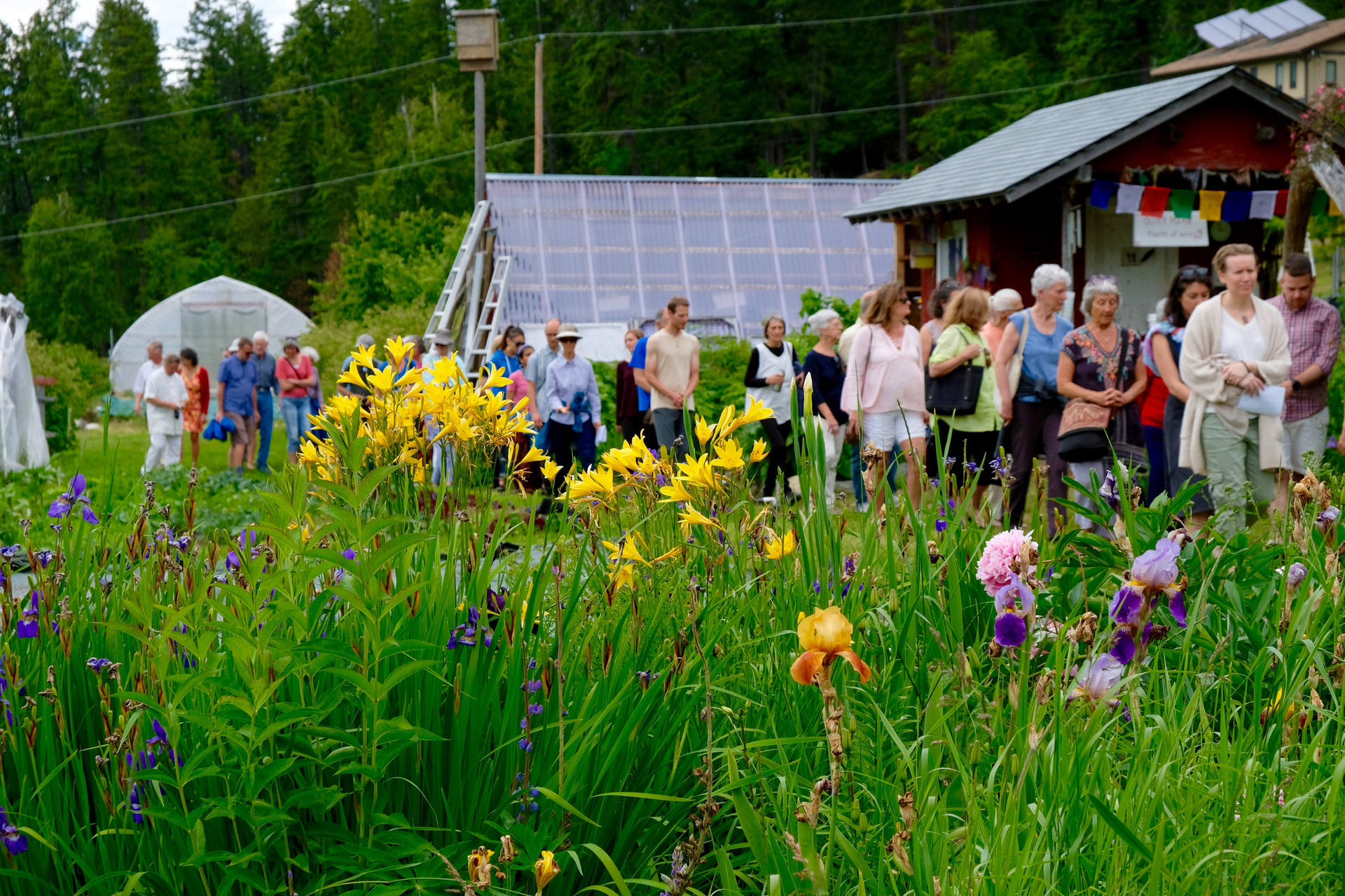 Audience and flowers.jpg
