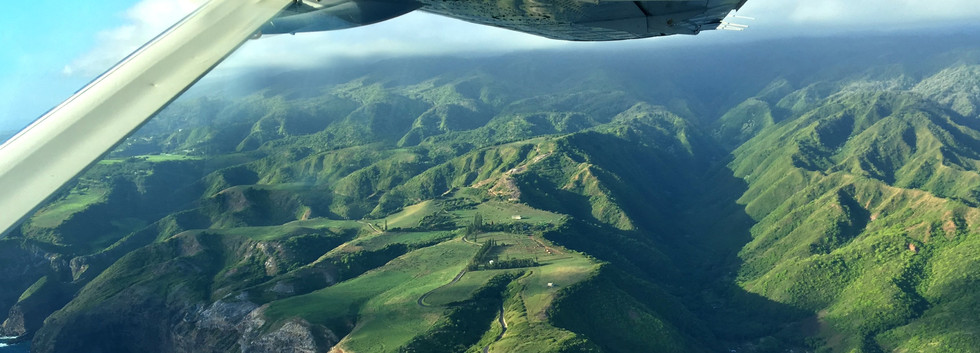 Airplane view of lush Maui countryside