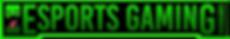Esports Gaming New logo png.png
