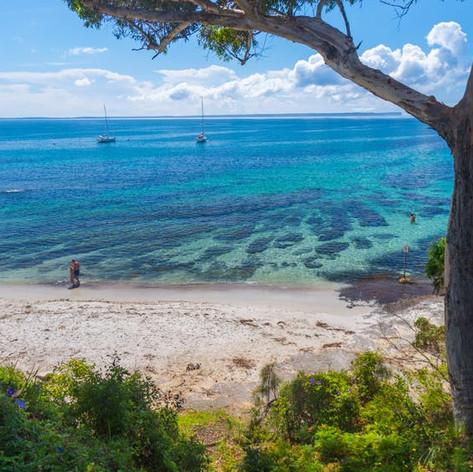 Sharknet Beach