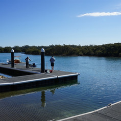 See the Stingrays at Woollamia Boat Ramp