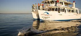 Jervis-Bay-Dolphins-and-TEKIN-III-Hi-Res