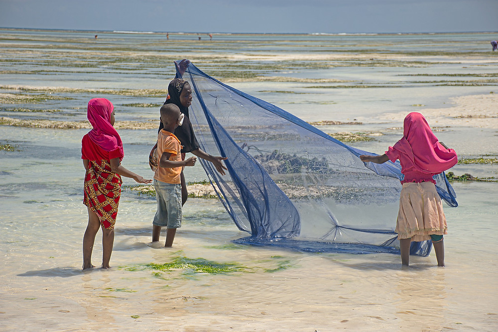 Family throwing out fishing net
