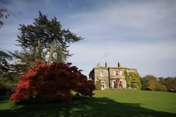 Purton House autumn trees