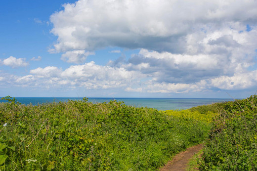 Meadow sea views