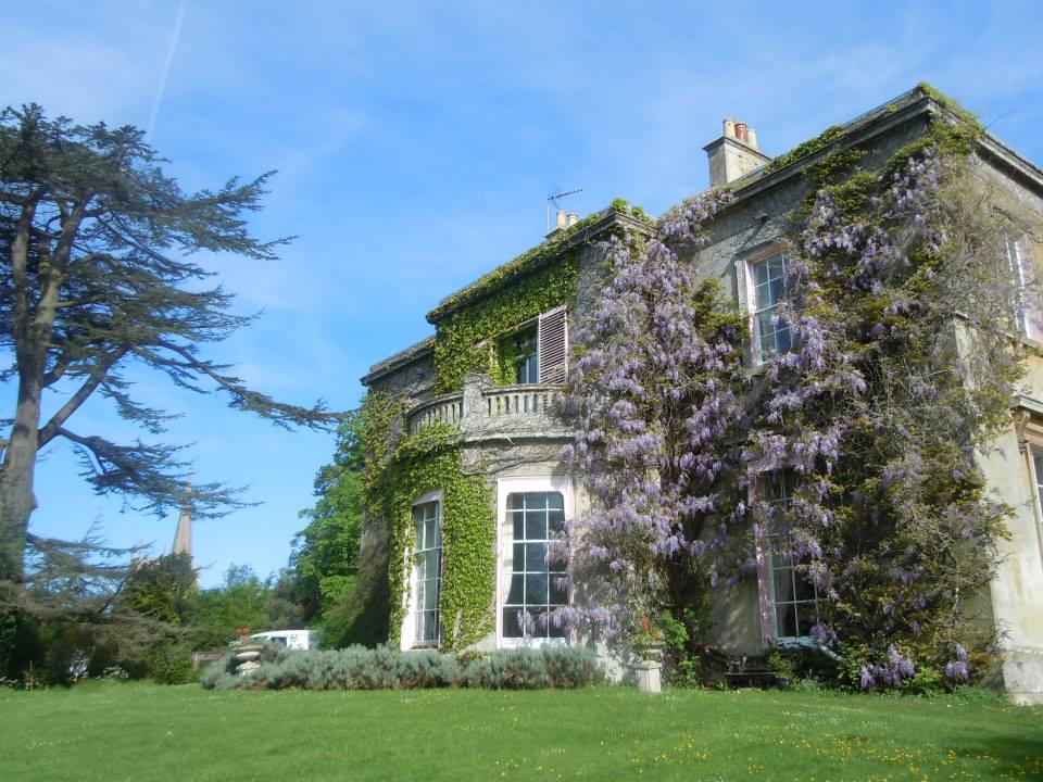 Wisteria at Purton House