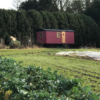 The Wagonat Coleshill Organics