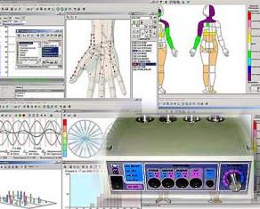 """IMEDIS-TEST"" - Vegetative Resonance Test"