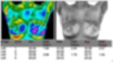 sample_report3-R1.jpg