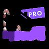 logo pro .png