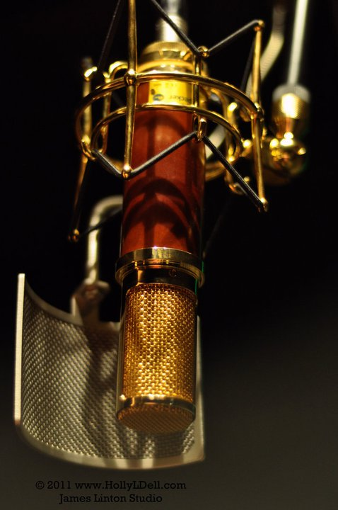 Gold Plated Microphone