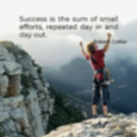 success is the sum of small efforts.jpg