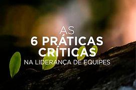 AAP As 6 Practicas Criticas.jpg