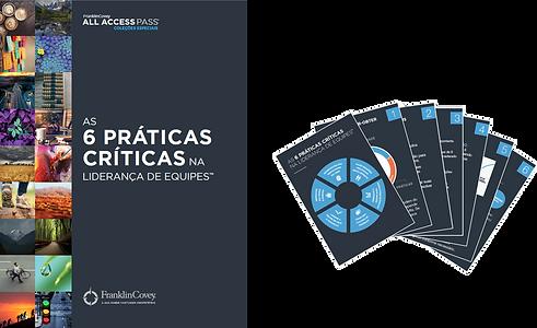 Material As 6 Praticas Criticas.png