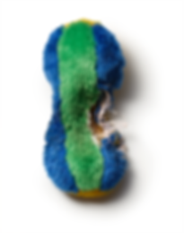 PAULA_PIP_TOYS_GREEN_BLUE_SPT copy.tif.p