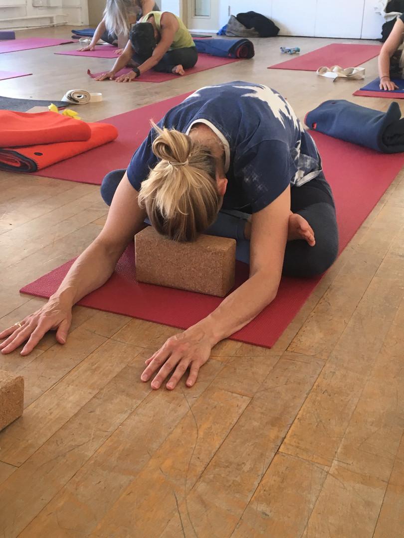 Dynamic Hatha Yoga Group Class