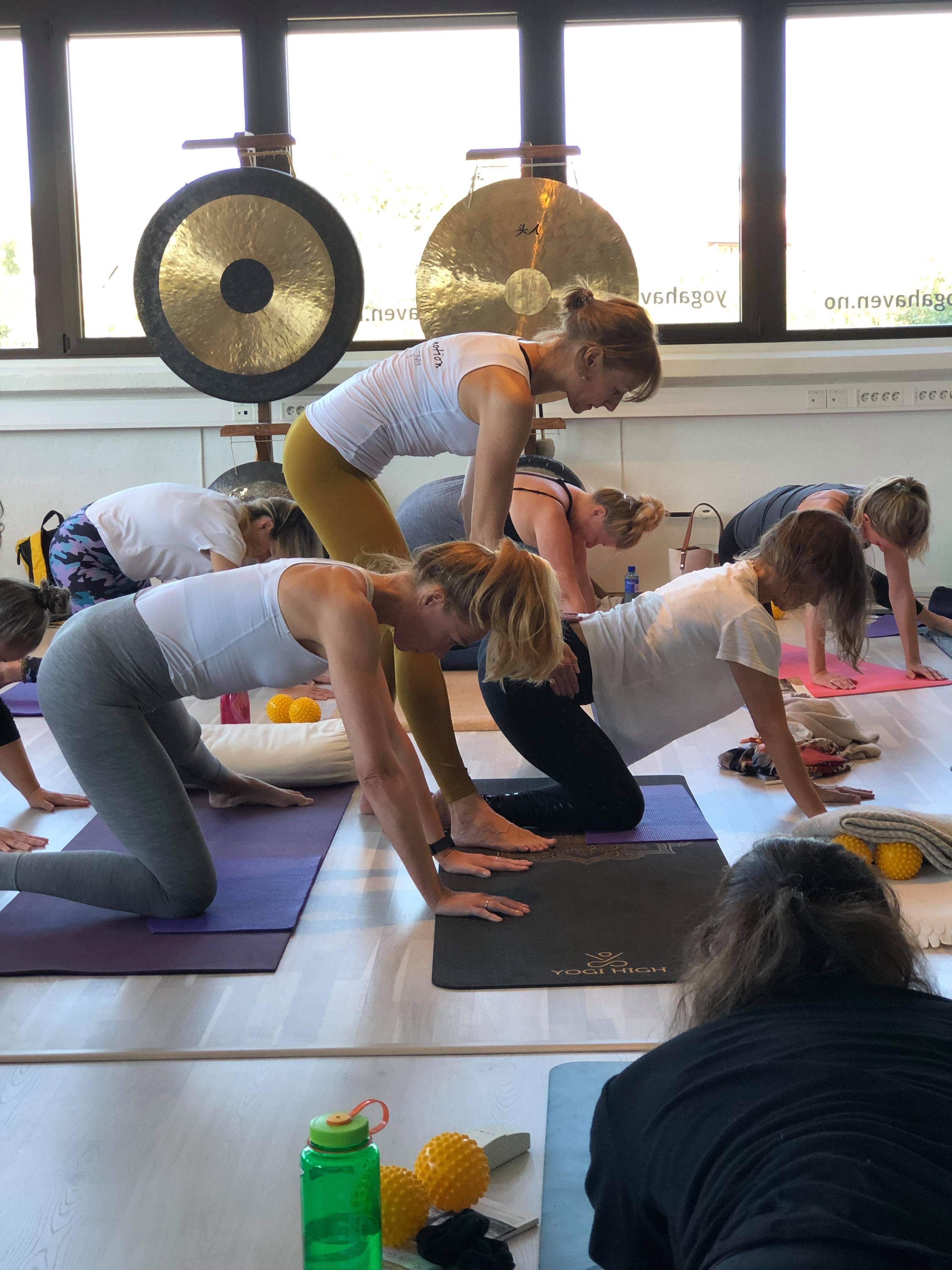 Wednesday Yoga Face to Face