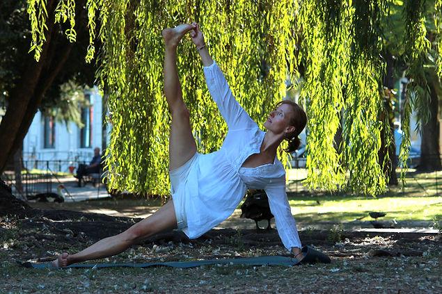 Dynamic Hatha Yoga, Stephanie Ross-Russell, Vasisthasana